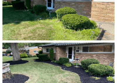 Landscaping Install BeforeAfter_2